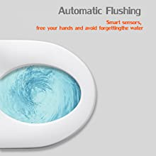 EUROTO EUT3828 One-Piece Dual Flush Toilet with Integrated Bidet, Integrated Bidet and Toilet