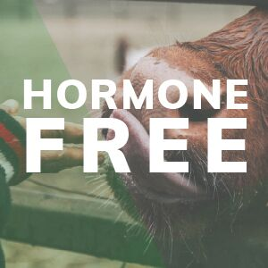 Hormone Free Whey Happy Cows Make Undenatured Whey From Grass-Fed Pastures Wild Foods