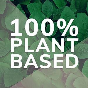 100% Plant Based All Natural Grown Ingredients Nutritional Mushroom Turmeric Maca Superfood Elixir
