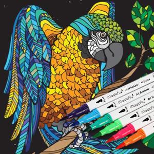 Amazon.com : 100 Dual Tip Brush Pens, Magicfly Water
