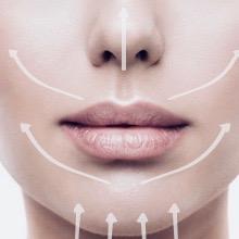 nose lips chin