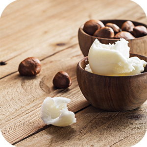 Shea butter and Shea nuts in wooden bowls.
