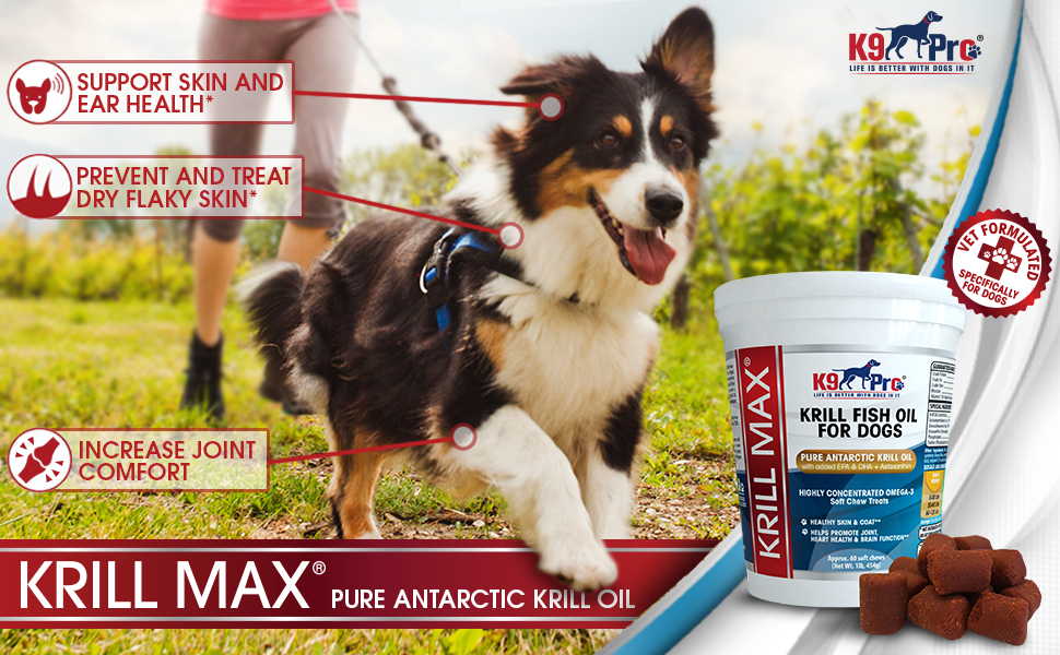 Amazon.com : Omega 3 Fish Oil for Dogs - Pure Antarctic