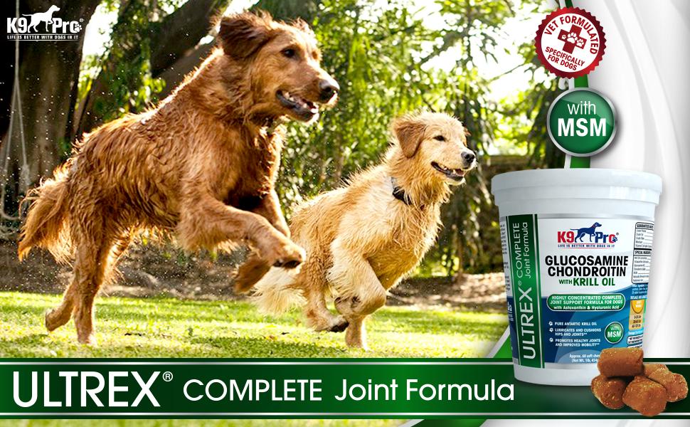 Amazon.com: Glucosamina para perros el # 1 Suplemento ...