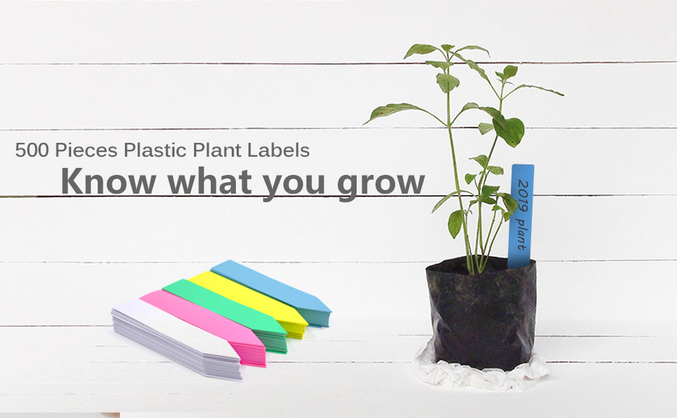 8 INCH -- PLANT LABELS  EXTRA STRONG 25 x 20cm EXCELLENT VALUE