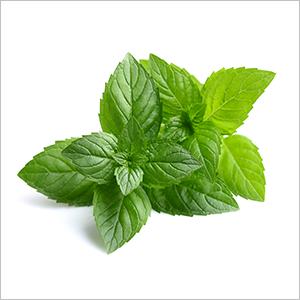 Cliganic Organic Peppermint