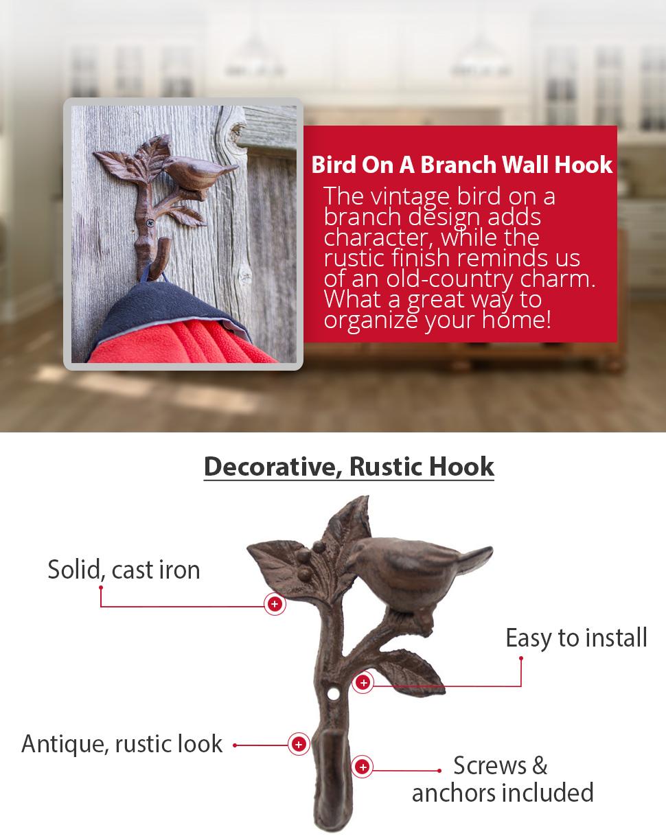 Amazon.com: Comfify - Gancho de pared para pájaros en una ...