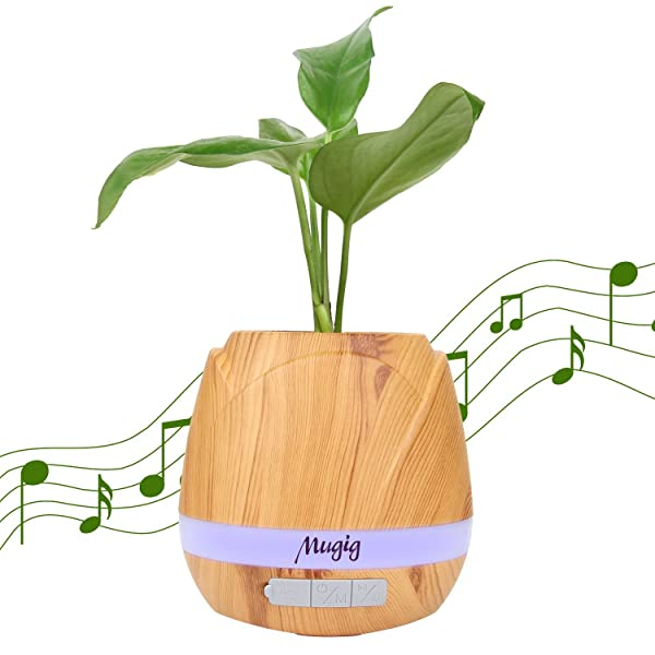 plants and music - 600×600