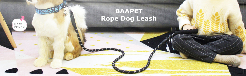baapet_dog_leashes