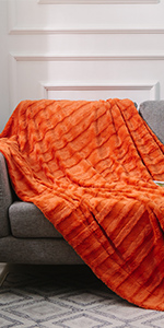 Ultra Cozy Faux Fur Microplush Reversible Throw Blanket