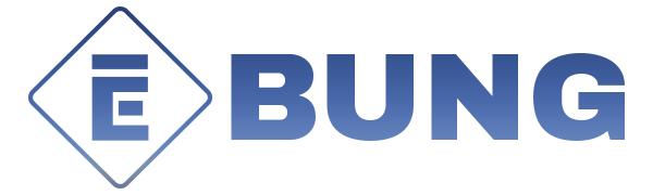ebung logo