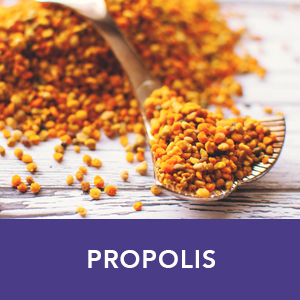Propolis supplement