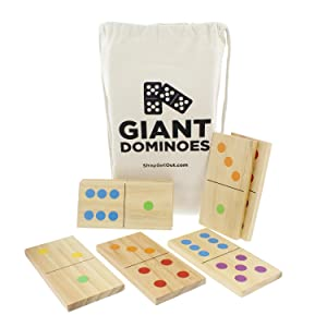 Picture of domino pieces and carrying bag
