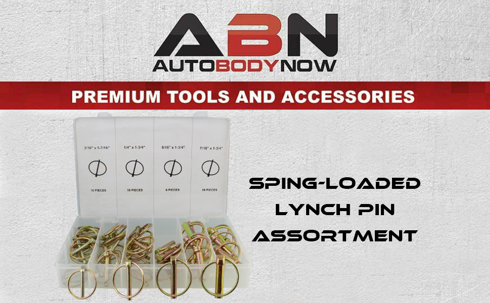 Amazon.com: ABN Spring-Loaded Lynch Pin 50-Piece Assortment Kit – L ...