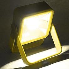 Super Bright COB Light:a 30W max,1200 Lumens COB LED