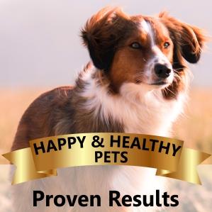 Amazon.com: Perro Cleaner/Advanced perro oreja Wax Remover ...