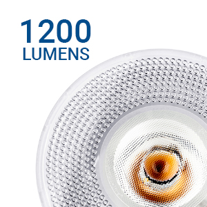 1200 lumens brightness luminous flux light output efficacy