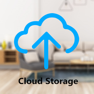 Cloud Storage Service