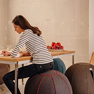 seat sitting ball office chair