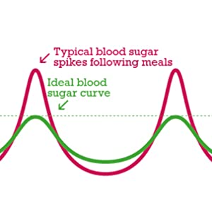 blood sugar regulation support maintenance