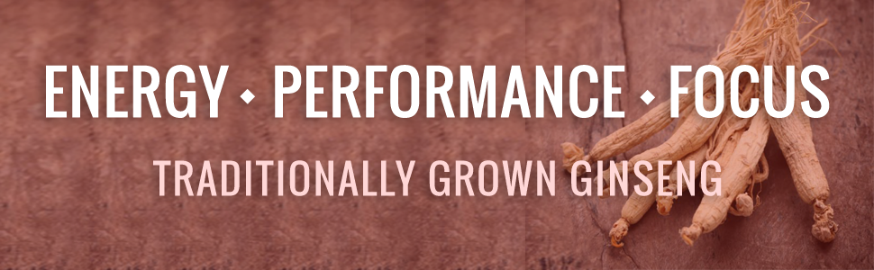 Energy Performance Focus Ginseng, Traditionally Grown Roots