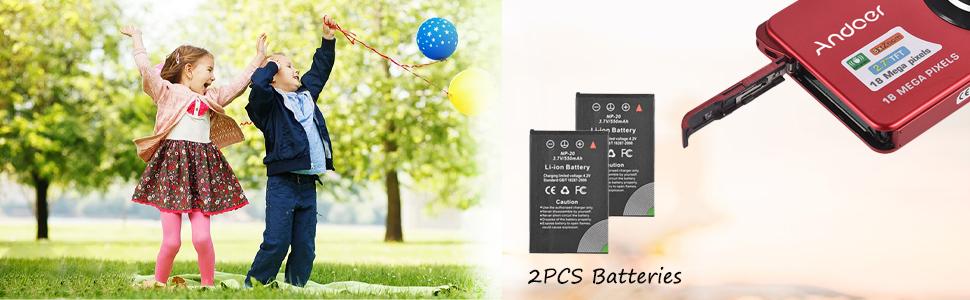 2pcs batteries