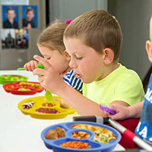Toddler plates with 4 different color for indentification