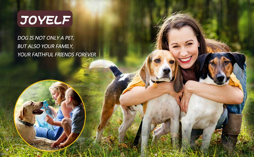 Amazon.com : JOYELF Orthopedic Dog Bed with Washable Cover