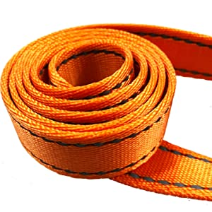 Thick Nylon Webbing Large Dogs, Big Dog, Puppy walking