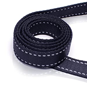 Thick Closely Stitched Nylon Webbing - Heavy Duty Leash with Double Handles