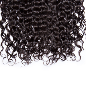 Maxine Hair Water Wave Lace Frontal Closure Brazilian Human Virgin Wet and Wavy Frontal Lace Closure
