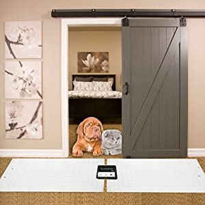 pet training mat