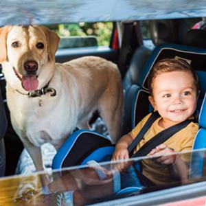 dog seat cover dog car seat cover dog hammock for backseat pet car seat cover pet seat cover for car
