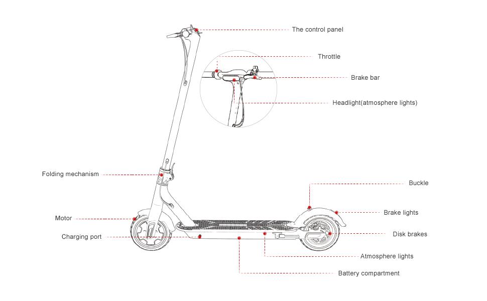 Amazon.com: TOMOLOO - Patinete eléctrico de dos ruedas ...