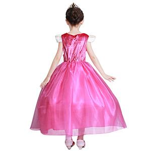 aurora costume dress