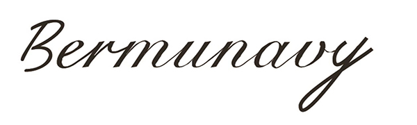 Bermunavy brand logo