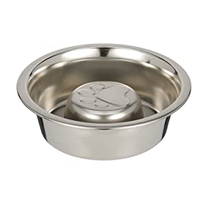 Neater Pet Brands Slow Feed Bowl Feeder Pet Dog Insert Fits in Most elevated double diner feeders