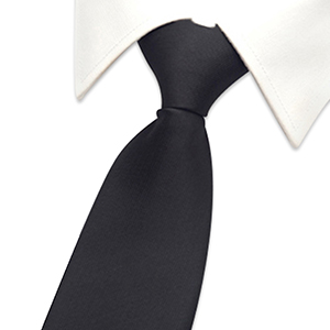 Boys Solid Color Zipper Tie 15 inch//19 inch Polyester Satin Zipper Neckties by Aurya