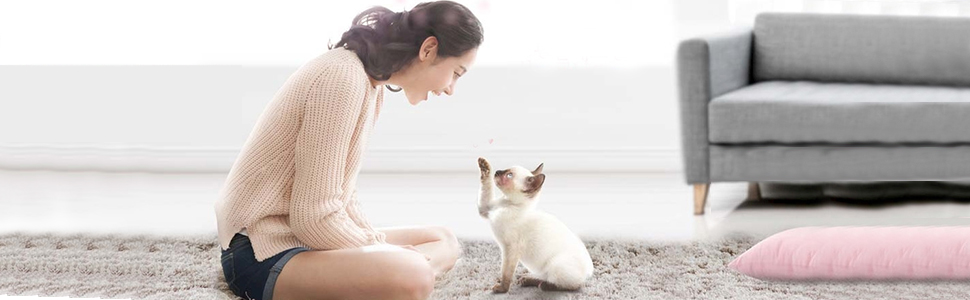 human and cat
