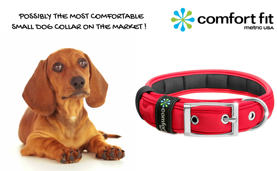Dog Collar Metric USA