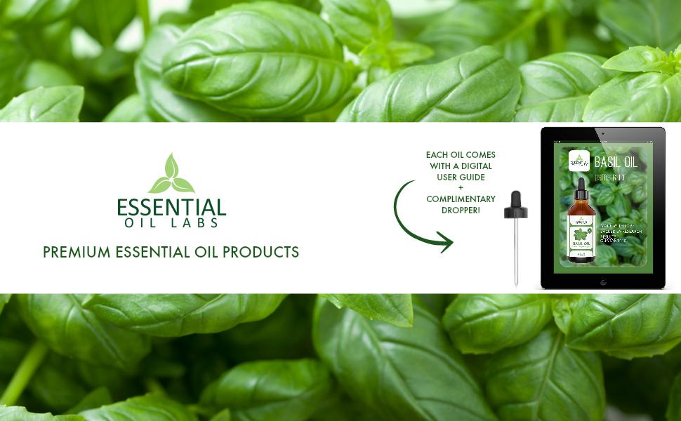 essential oil labs basil oil, basil essential oil, essential oil labs