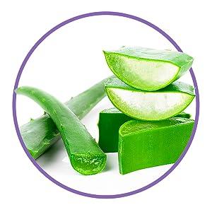 Aloe vera moisturizing