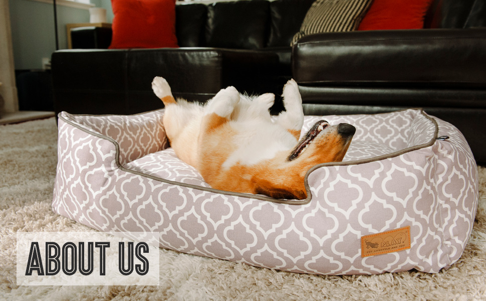 pet play about us