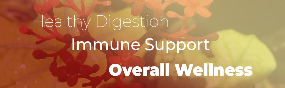 goldenseal root supplement