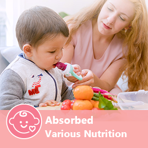 Baby Fresh Fruit Feeder Pacifier  Feeding Teething Toys Teether