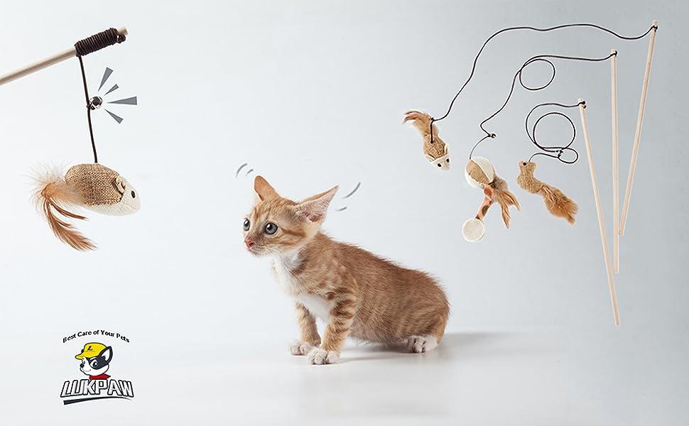Amazon.com: LukPaw - Juego de juguetes para gatos y gatitos ...