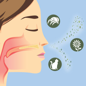 allergies seasonal allergies sneezing congestion cough fatigue runny eyes itchy eyes red eyes