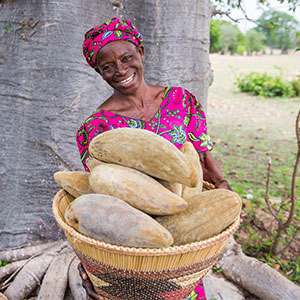 Aduna Baobab Producer, Upper East Ghana