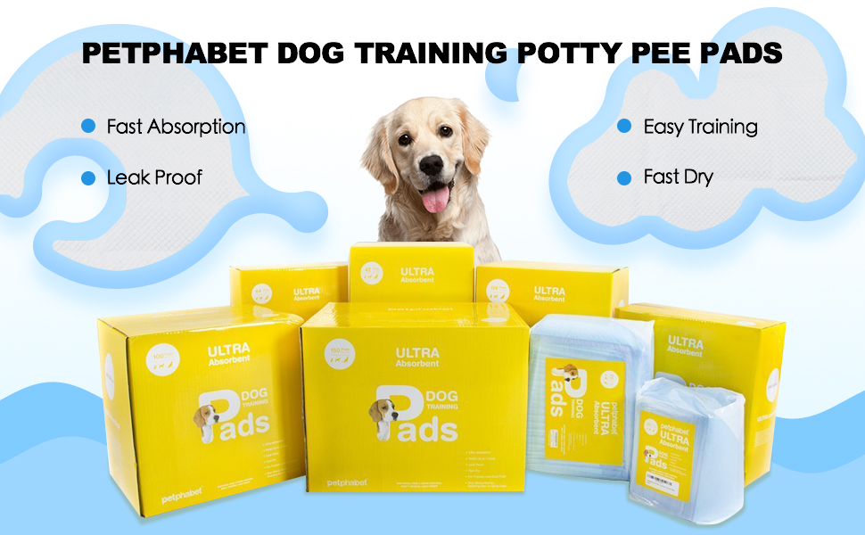 Amazon com : Pee Pads- 100 Count - 23