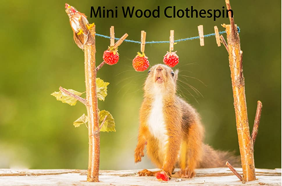 DECORA Sturdy 1 Inch Mini Wooden Craft Clothespins 100pcs AX-AY-ABHI-116648